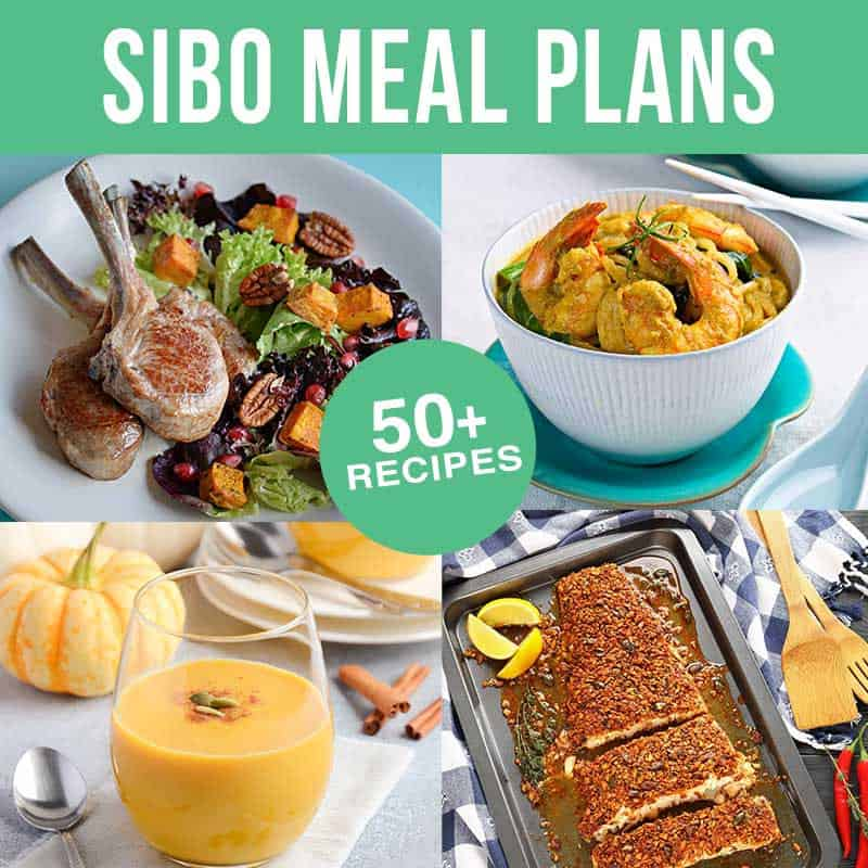 Monthly SIBO Meal Plans Square