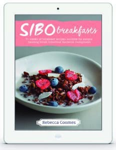 The healthy gut Breakfast Recipe Ebook Ipad Cover by Rebecca Coomes