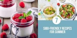 7 Sibo Friendly Recipes For Summer Twitter