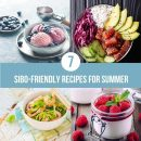 7 Sibo Friendly Recipes For Summer Blog